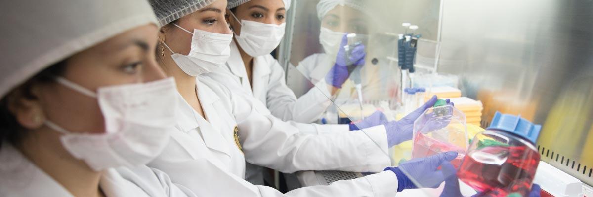 ing-biotecnologica-ucsm