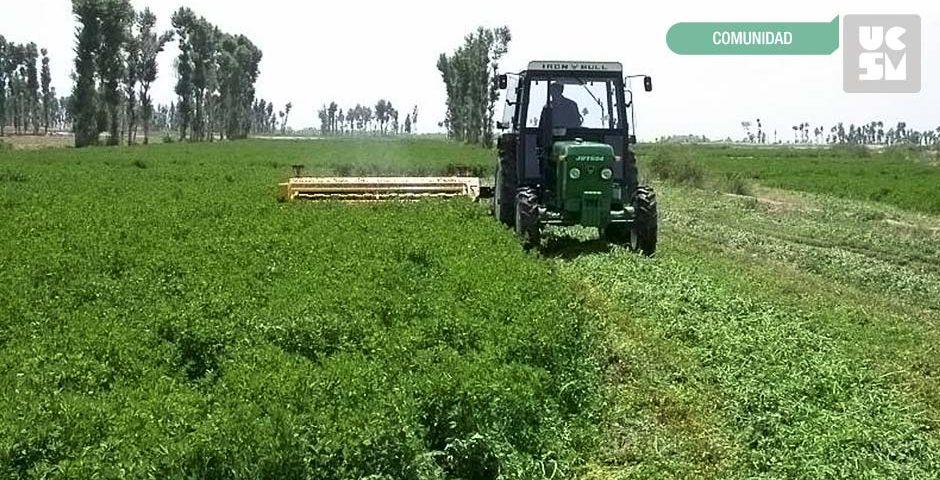 controlplagas_cultivo_alfalfa_ucsm
