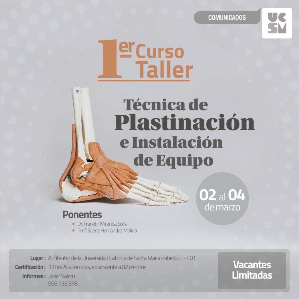 medician-plastinacion-2
