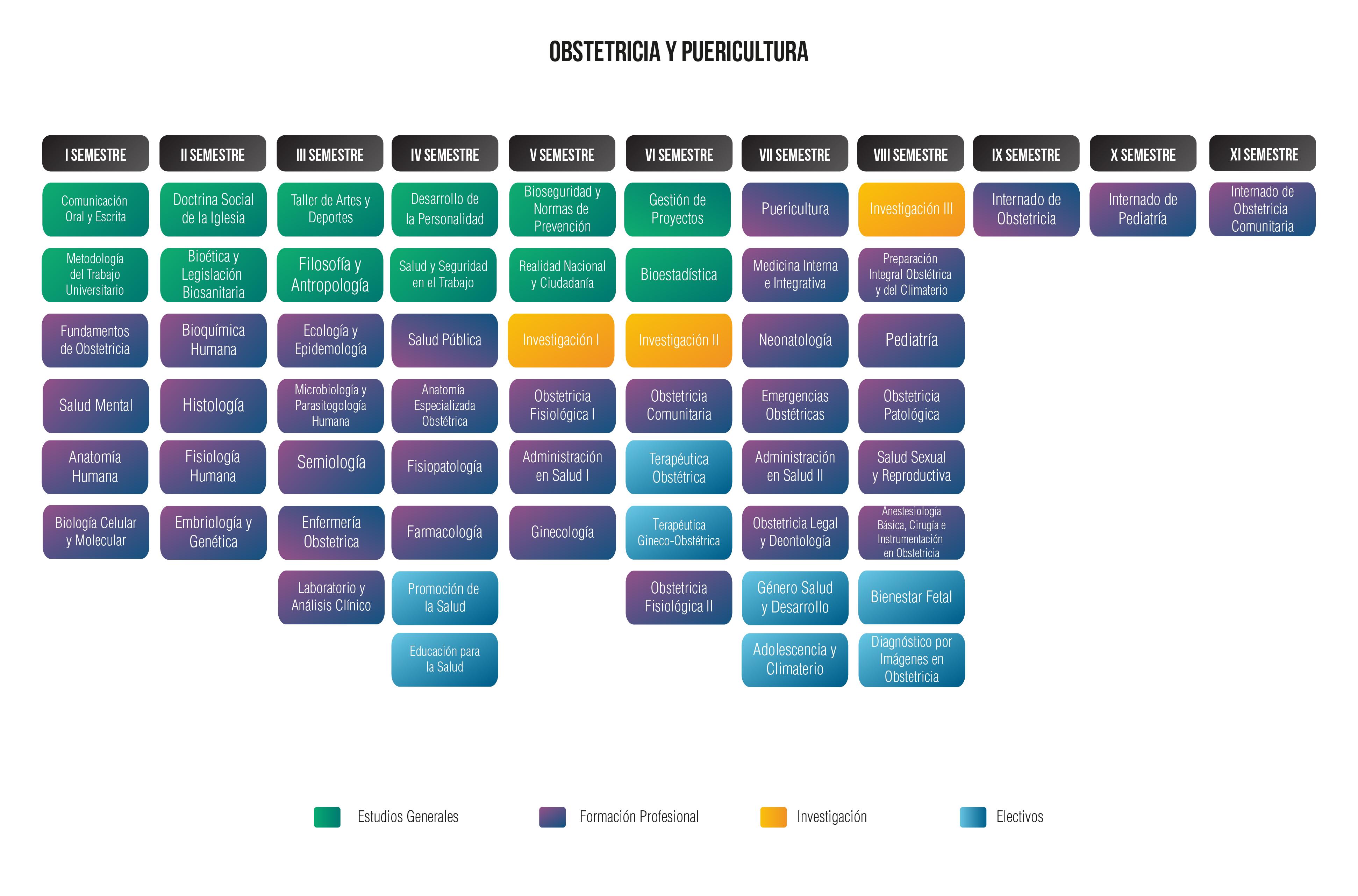 obstetricia-malla-curriular-01