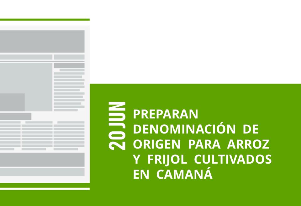 20-20-jun-preparan-denominacion-de-origen-para-arroz-y-frijol-cultivados-en-camana