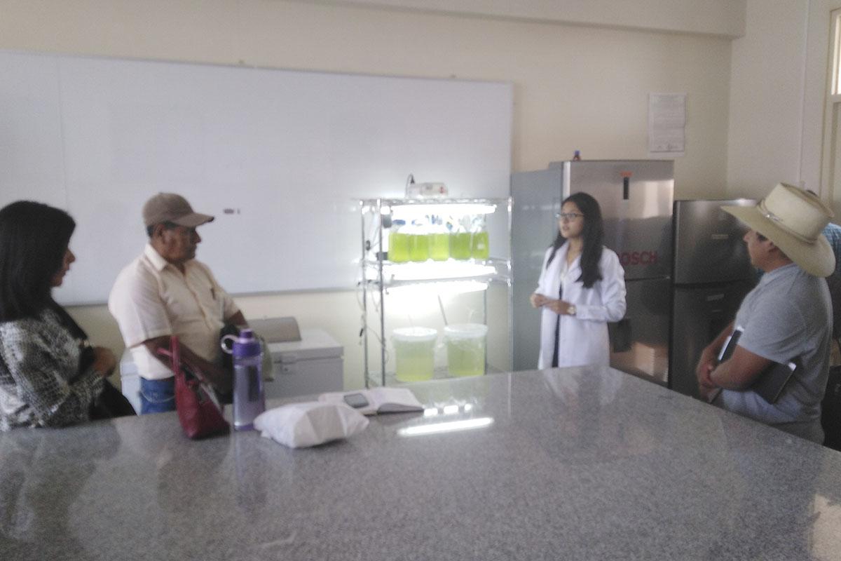 santamarianos-desarrollan-nueva-estrategia-lucrativa-de-negocio-accesible-para-productores-del-colca-_0000_img_20190423_