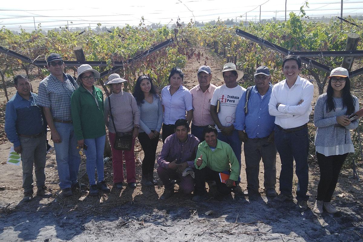 santamarianos-desarrollan-nueva-estrategia-lucrativa-de-negocio-accesible-para-productores-del-colca-_0001_img_20190422_