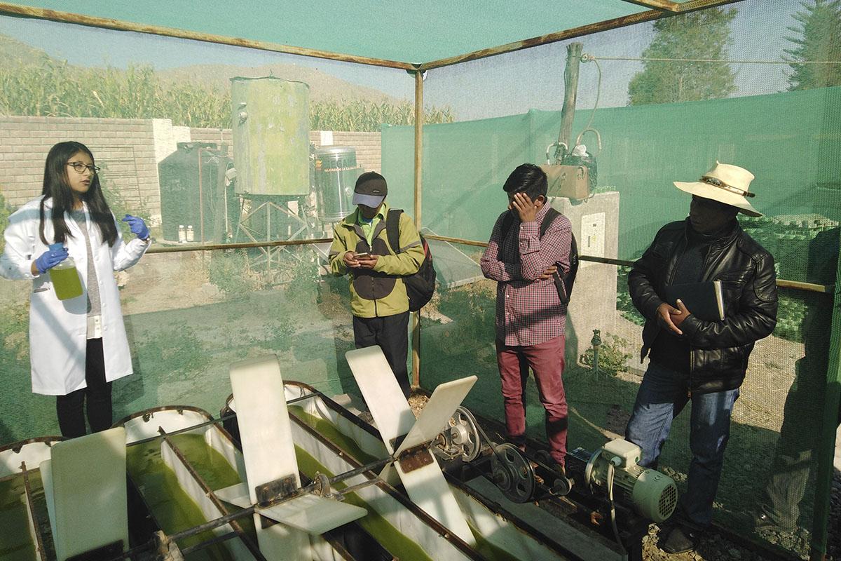santamarianos-desarrollan-nueva-estrategia-lucrativa-de-negocio-accesible-para-productores-del-colca-_0002_img_20190422_