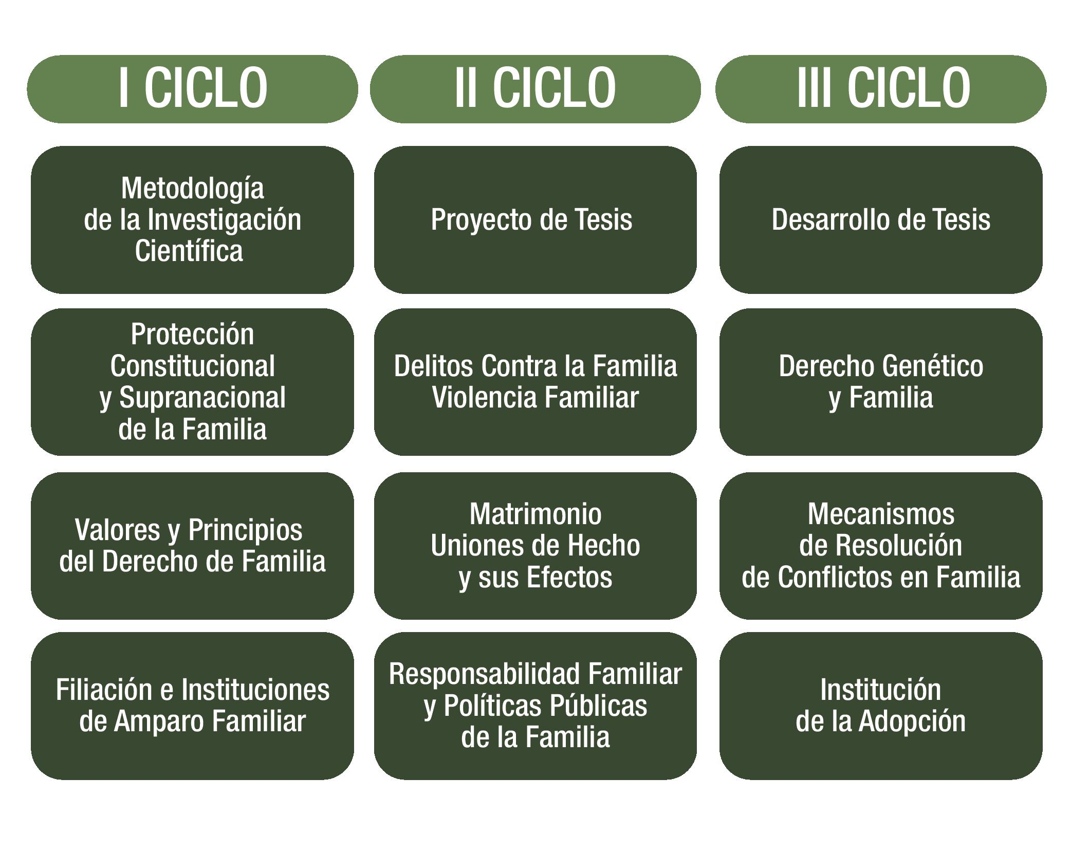 derecho-de-familia_mesa-de-trabajo-1-copia
