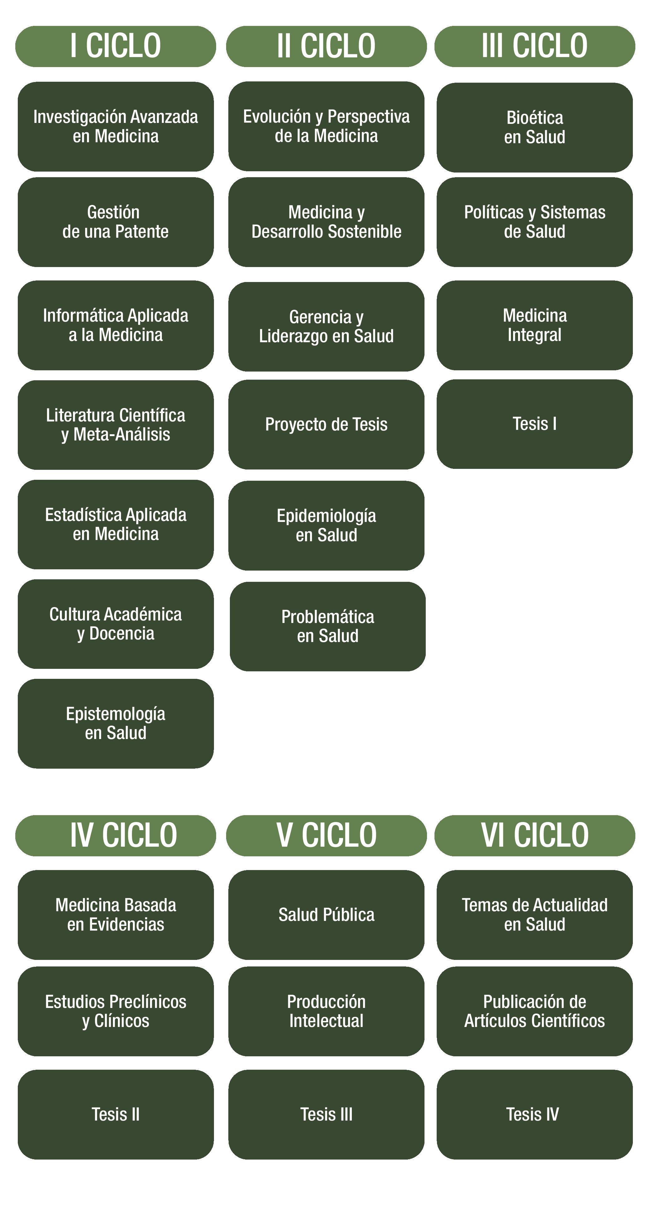 doctorado-en-medicina_mesa-01_mesa-de-trabajo-1-copia-18