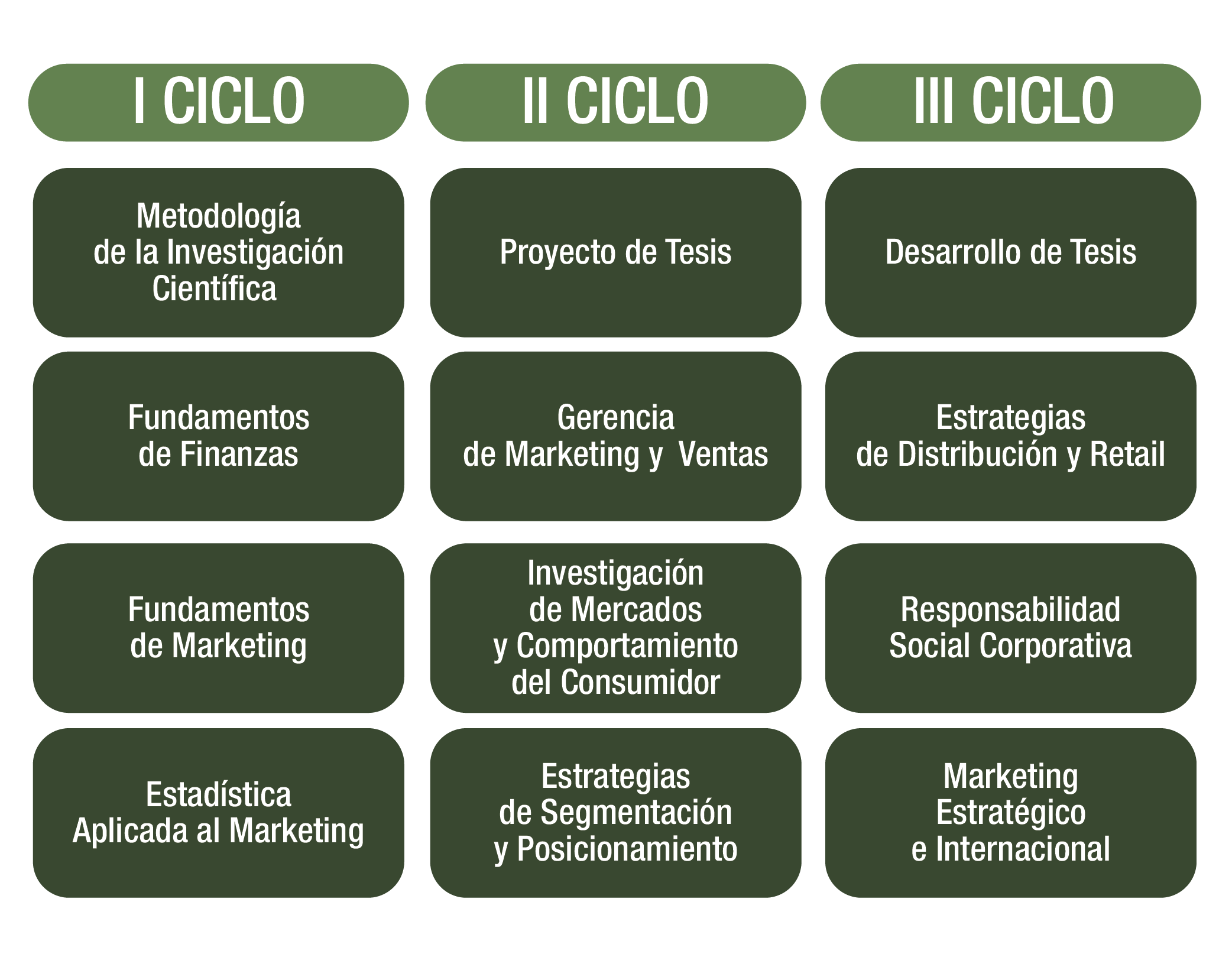 marketing_mesa-de-trabajo-1-copia-2