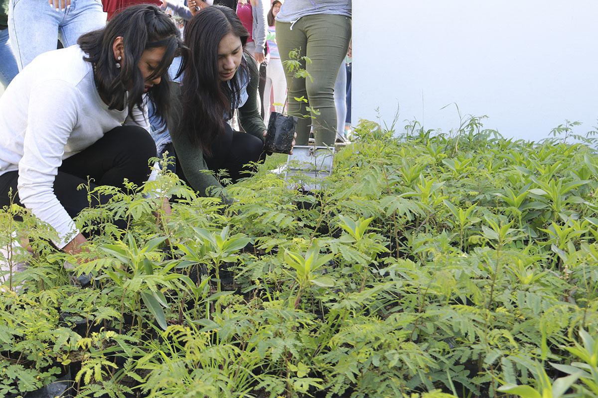 ucsm-y-el-proyecto-arequipa-ciudad-verde-en-lo-que-va-del-ano-dono-1525-arbolitos-en-beneficio-de-la-comunidad_0000_im