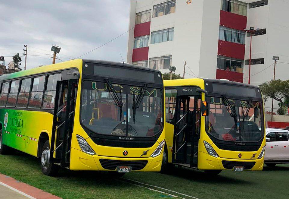 buses-portada