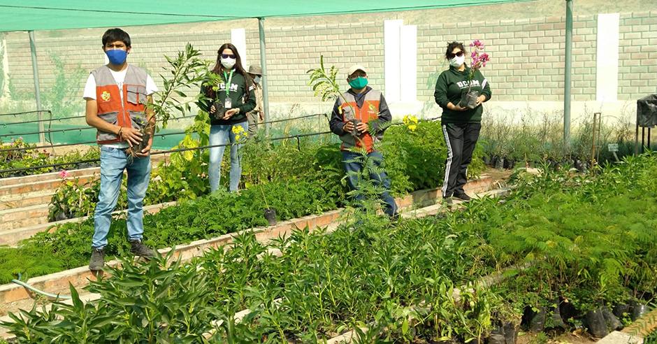 ucsm-proyecto-arequipa-ciudad-verde-entrego-1150-plantones-para-reforestar-el-distrito-de-sachaca-portada