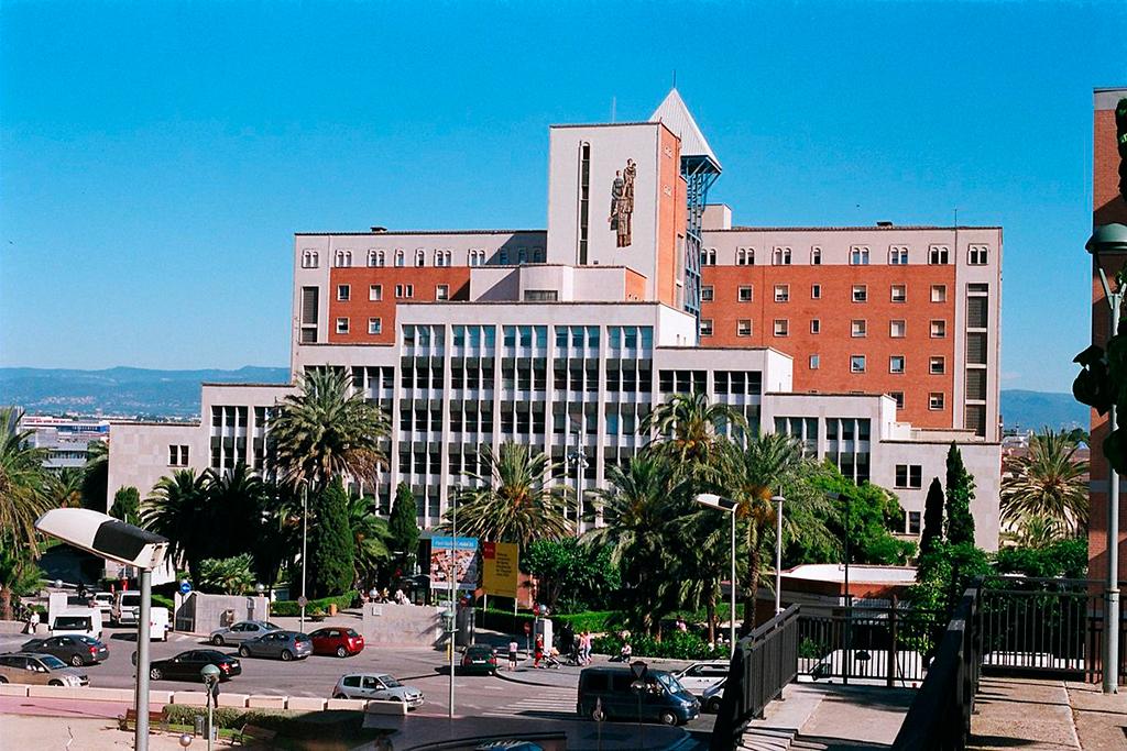 seis-medicos-egresados-de-la-ucsm-seran-formados-por-cinco-anos-en-el-sistema-nacional-de-salud-de-espana1
