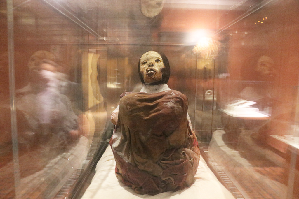 ucsm-museo-santuarios-andinos-de-la-ucsm-reaperturo-atencion-a-turistas-y-a-poblacion-arequipena-1