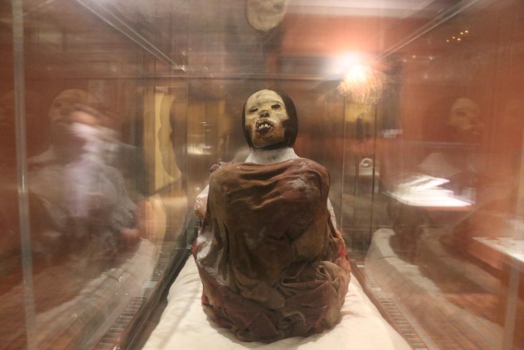 ucsm-ingreso-al-museo-santuarios-andinos-de-la-ucsm-este-18-de-mayo-sera-gratuito-1