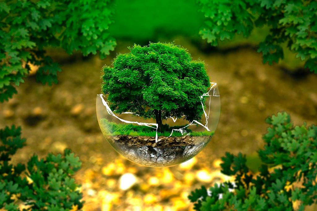 ucsm-santamarianos-se-proponen-sensibilizar-a-la-poblacion-para-lograr-un-cambio-en-su-conducta-en-favor-del-medio-ambiente-2